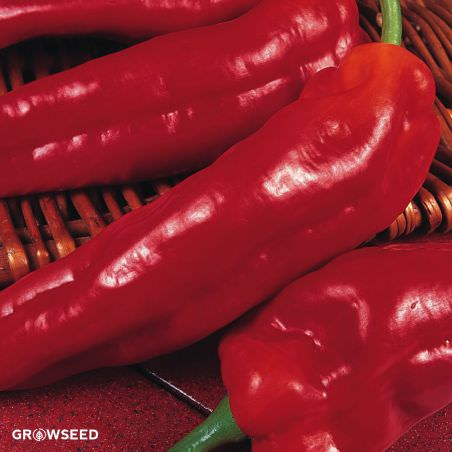 Long Red Marconi Sweet Pepper Seeds